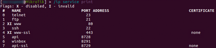 Figure 1. Services running on the router