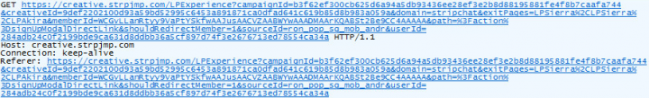 Figure 6. Packet trace shows the creative.strpjmp.com domain making a GET request to itself, creating an infinite number of requests